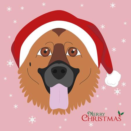 german shepherd dog: Christmas greeting card. German Shepherd dog with red Santas hat