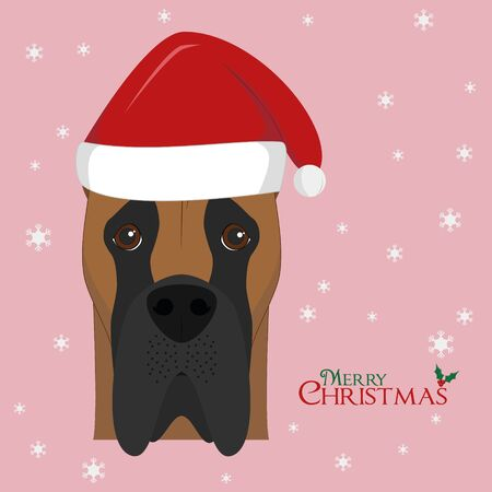 dane: Christmas greeting card. Great Dane dog with red Santas hat