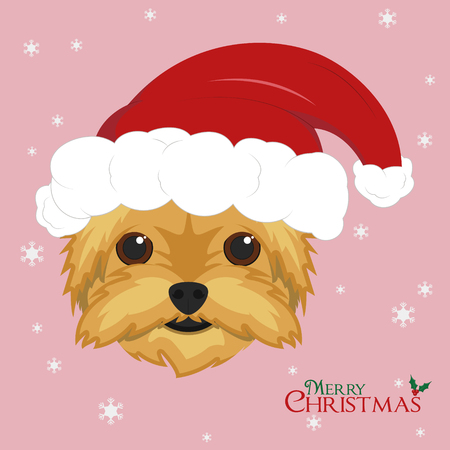 yorkshire terrier: Christmas greeting card. Yorkshire Terrier dog with red Santas hat