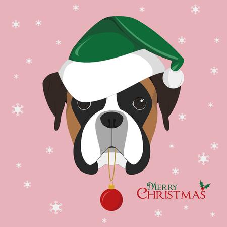 boxer dog: Christmas greeting card. Boxer dog with green Santas hat and Christmas toy ball