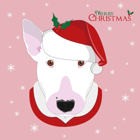 Christmas greeting card. Bull Terrier dog with red Santas hat