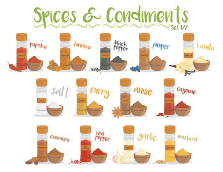 Set of 13 different culinary species and condiments in cartoon style. Set 1 of 2