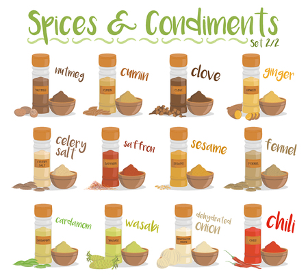 Set of 12 different culinary species and condiments in cartoon style. Set 2 of 2