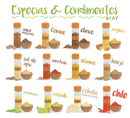 Set of 12 different culinary species and condiments in cartoon style. Set 2 of 2. Spanish names.