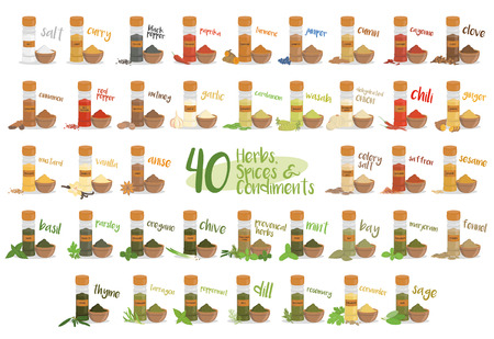 culinary: Set of 40 different culinary herbs, species and condiments in cartoon style.
