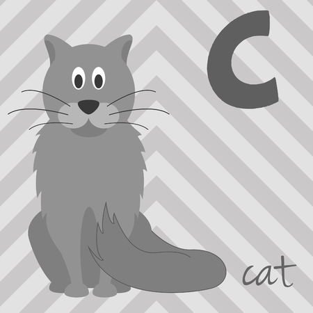 Cute cartoon zoo illustrated alphabet with funny animals: C for Cat. English alphabet. Learn to read. Isolated Vector illustration.
