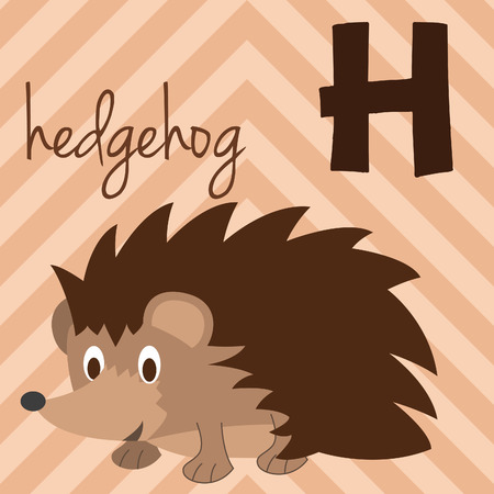 Cute cartoon zoo illustrated alphabet with funny animals: H for Hedgehog. English alphabet. Learn to read. Isolated Vector illustration.