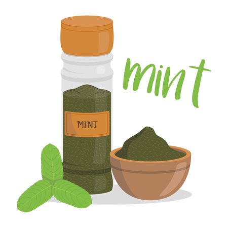 Vector mint illustration isolated in cartoon style. Herbs and Species Series Çizim