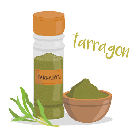 Vector tarragon illustration isolated in cartoon style. Herbs and Species Series