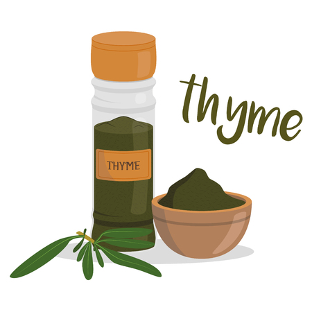 Vector thyme illustration isolated in cartoon style. Herbs and Species Series
