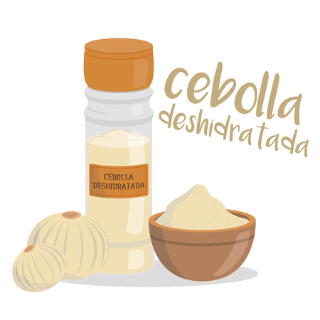 Vector dehydrated onion illustration isolated in cartoon style. Spanish name. Herbs and Species Series