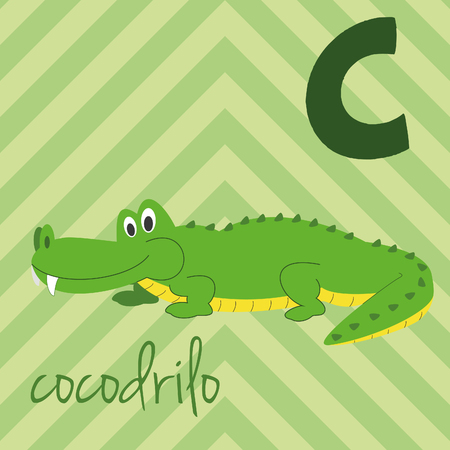 Cute cartoon zoo illustrated alphabet with funny animals. Spanish alphabet: C for Cocodrilo. Learn to read. Isolated Vector illustration.