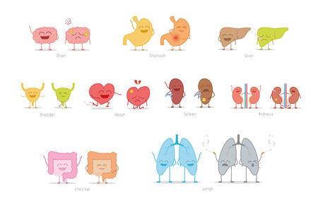 Set of healthy and sick human organs in cartoon style. Vector illustration
