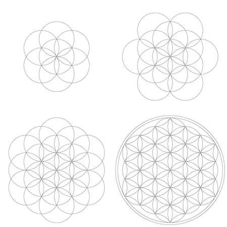 Conjunto de formas y elementos geométricos. Desarrollo de la Flor de la Vida de la Geometría Sagrada. Diseños vectoriales