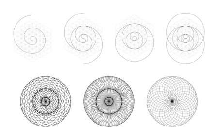 Set of geometrical elements and shapes. Sacred Geometry Torus Yantra or Hypnotic Eye development. Vector designs