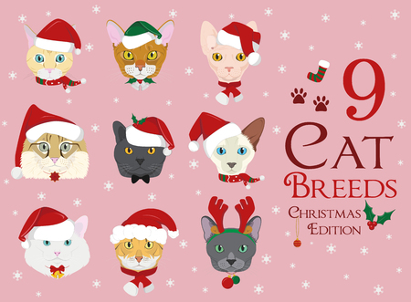 Set of 9 cat breeds with Christmas and winter themes Illustration