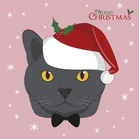 Christmas greeting card. Chartreux cat with red Santa's hat