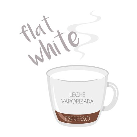 Vector illustration of a Flat White coffee cup icon with its preparation and proportions and names in spanish.