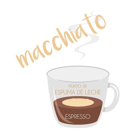 Vector illustration of a Macchiato coffee cup icon with its preparation and proportions and names in spanish.