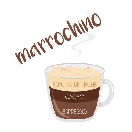 Vector illustration of a Marrochino coffee cup icon with its preparation and proportions and names in spanish. Иллюстрация