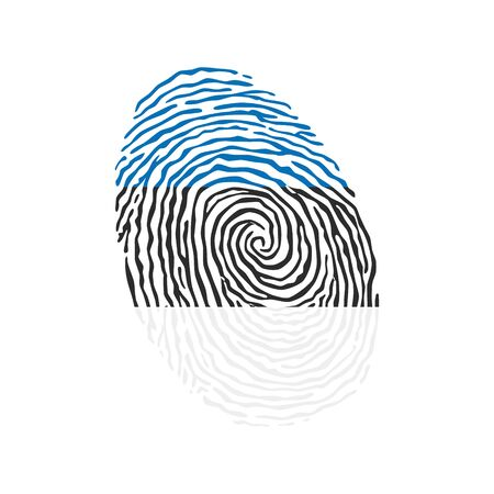 Fingerprint vector colored with the national flag of Estonia