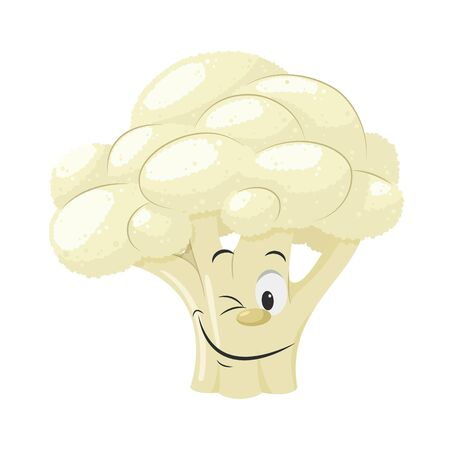 Vegetables Characters Collection: Vector illustration of a funny and smiling cauliflower in cartoon style. Vektorové ilustrace