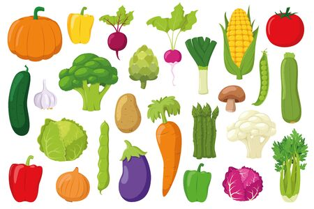 Vegetables Collection: Set of 26 different vegetables in cartoon style Vector illustration 일러스트