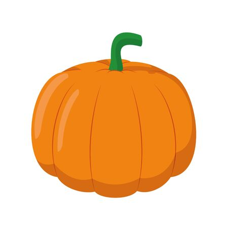 Vector illustration of a funny pumpkin in cartoon style. Ilustracja