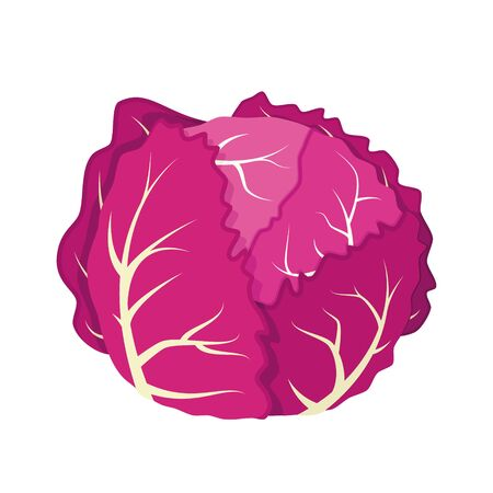 Vector illustration of a funny purple cabbage in cartoon style. Ilustracja