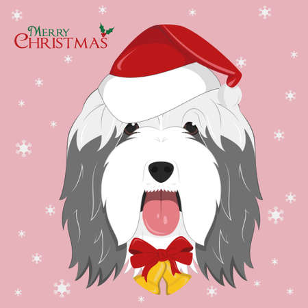 Christmas greeting card. Bearded Collie dog with red Santa's hat and golden Christmas bells