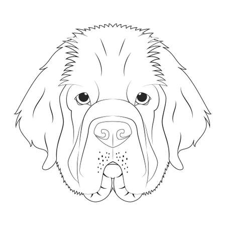 Newfoundland dog easy coloring cartoon vector illustration. Isolated on white background