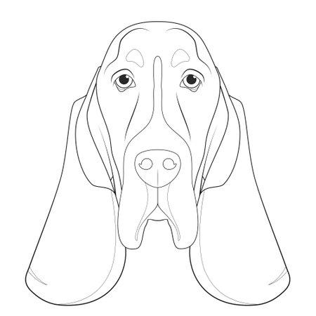 Basset Hound dog easy coloring cartoon vector illustration. Isolated on white background Vettoriali