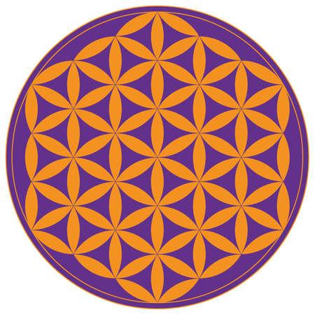 Colorful geometrical figure. Sacred Geometry Flower of Life vector illustration