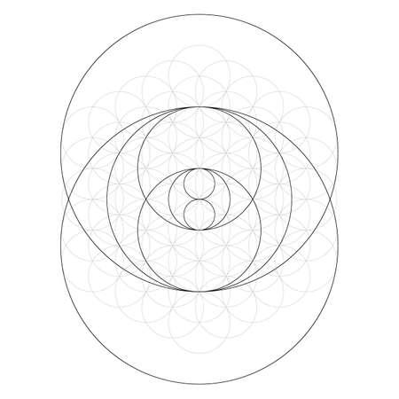 Geometrical figure. Sacred Geometry Torus Yantra or Hypnotic Eye vector illustration