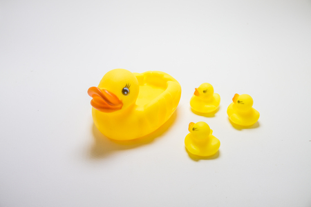 twain: Yellow Mother and baby ducks rubber duck on White Background