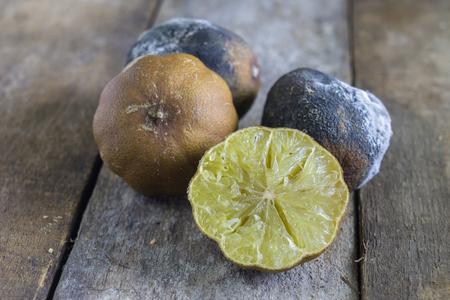 spoilage: mold lemons,rotten lemon,rotten lime on wooden background.