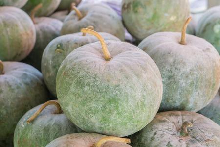 ash gourd: Winter Melon, White Gourd, Winter Gourd, Ash Gourd,Benincasa hispida
