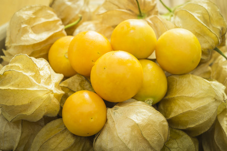 cape gooseberry: Fresh organic physalis fruit ,Helathy fresh Gooseberry Cape ,Uchuva delicious tropical fruit in Peru, Cape gooseberry (Physalis peruviana) plant on wooden background Stock Photo