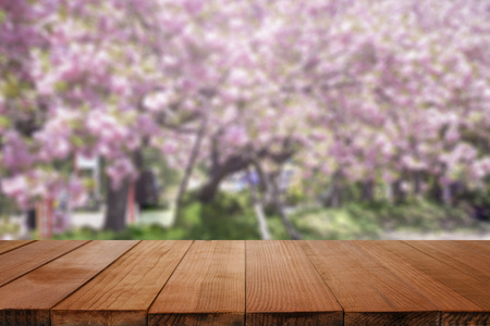 Empty brown wooden table and blur background with Cherry blossoms. Spring landscape. Spring day.in spring time, sakura,for product display montage,can be used for montage or display your products