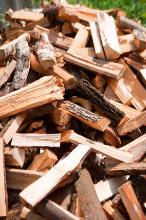 kindling: heap of birch firewood lying on the ground Stock Photo