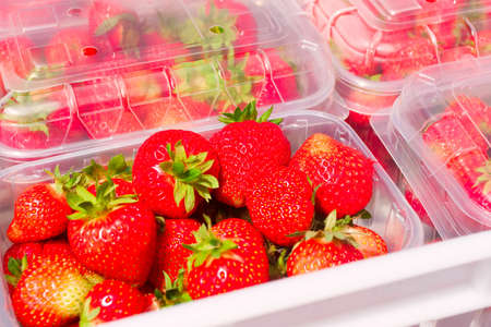 Boxes of freshly picked summer strawberries displayed at market fruit stand