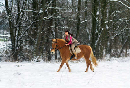 Attractive Young Woman Riding a Horse the Snow photo