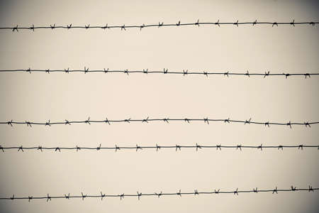 Barbed wire with fence on sky background Stock Photo - 17560952