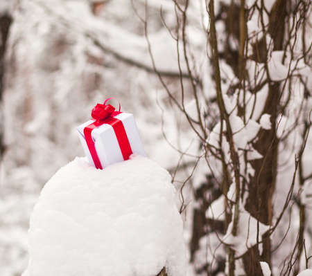 manifold: Present in snow decoration for manifold occasions