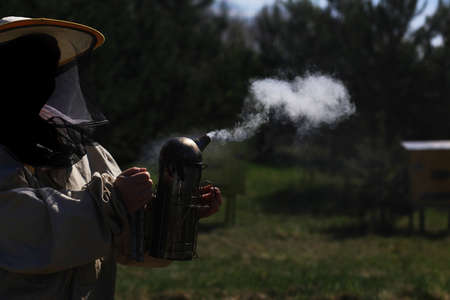 Beekeeper working in his apiary photo