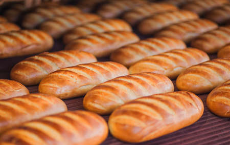 Baked Breads on the production line at the bakery Stock Photo