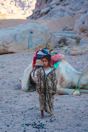 SHARM EL SHEIKH, EGYPT - JULY 9, 2009. little girl stands in the desert camel in the background.