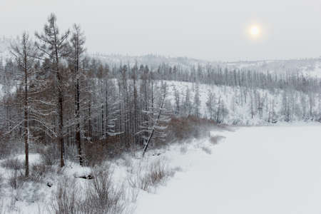 inclement weather: winter landscape with hills, trees in the snow during inclement weather Stock Photo