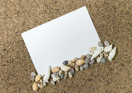 bordering: blank paper for messages on a background of sand bordering of sea shells
