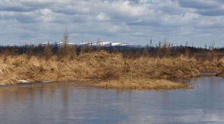 clime: Landscape. Cool spring day in South Yakutia, Russia